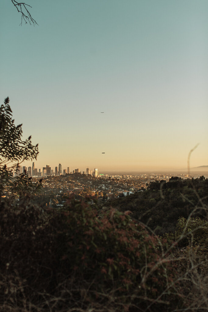 Los Angeles, 2020